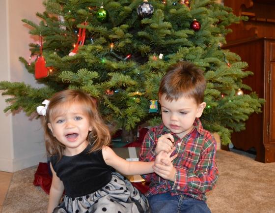 christmas photo 1