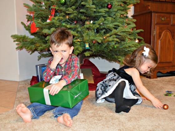 christmas photo 12