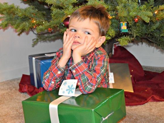 christmas photo 13