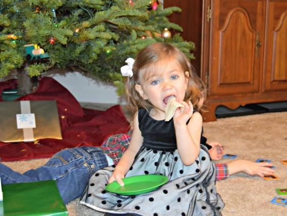 christmas photo 16